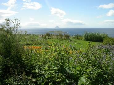 Scottish School of Herbal Medicine One Year Correspondence Course