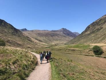 Celtic Herbal Medicine – New Lammas Course