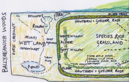 Drawn Map